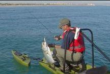 Photos of the day-Archivo fotos del día - Pesca en ríos y embalses / Clic & Fish - Imágenes especializadas en pesca obtenidas por expertos. Más información en https://clicandfish.com/ / by CLIC & FISH