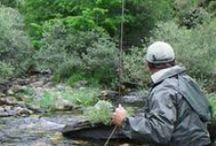 Vídeos de pesca. Fishing Videos / Disfruta de los mejores vídeos de pesca única, en los mejores ríos y tramos de España. / by CLIC & FISH
