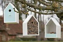 Bird feeders/birdhouses