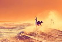 ◆ S P O R T / Envies du moment, belles photographies... SURF, FLAG & RUNNING.