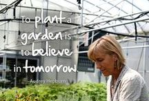 Inspirational Gardening Quotes / Interesting and inspirational quotes and phrases to help remind you of gardening.