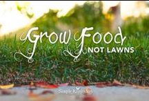 Gardening & Farming for Self-Sufficiency / by The Good Life Project
