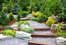 -Garden-