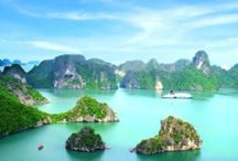 Hooked on Vietnam / Looking forward to a trip there one day