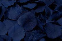 • Color • Blue •