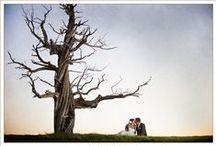 Weddings at Pronghorn