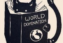 κιттens doмιnαтe тнe ωorld! / Because I know. . . cats dominate the world!♥