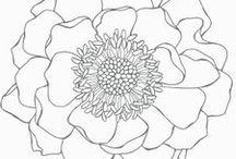 SU - Blended Bloom