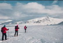 The Arctic Marathon 2015 / One of our amazing Unique Challenges. Back country skiing. 26th Feb- 3rd March 2015. Subarctic Sweden.