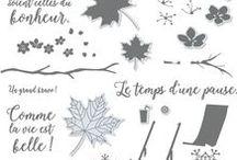 SU - Saisons colorées / Colorful seasons