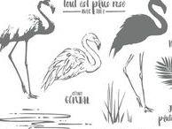 SU - Fabuleux flamant / Fabulous flamingo