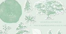 SU - Racines de vie / Rooted in nature