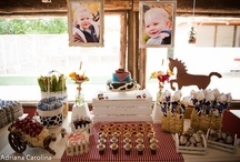 Birthday Theme: Farm Party!