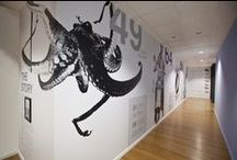 Wall Graphic Inspiration / Vinyl wall graphics add beauty and life to any space, whether at home or the office!