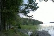 My home Kinkomaa, Finland / luontoa Päijänneen rannalta / Live at Päijänne lake all photos taken by me
