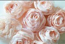 Květiny/Flowers