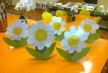kytky, kaktusy