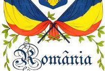 A*13 /                                  Romania                                                                                 My beloved Shady Kingdom