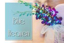 Blue Heaven / Shades of blue themed weddings.
