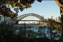 ANZSCoS Conference 2013 / Australian and New Zealand Spinal Cord Society Conference 2013