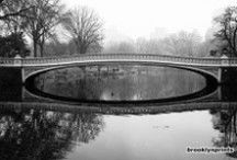 Bow Bridge, Central Park / Photos of Central Park's Bow Bridge in NYC, one of the most charming and beloved bridges in the park.