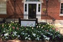 Decatur House Preferred Vendors / From Caterers, Florists, Event Planners, Musicians....we have you covered for your event at Decatur House.