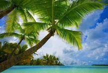 Caribbean / Caribbean ☀️