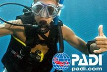 OXBOLD Scuba Diving Course Malaysia / All about Scuba Diving in Malaysia. We offer PADI and SSI Dive Lesson and Leisure Dive Package in Malaysia  For more info, please visit http://www.oxbold.com/scubadivingmalaysia.htm