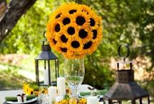 Sunflowers / by Pearl Event Planning