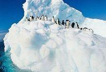 Antarctica Travel I Antarktis Reiseziele