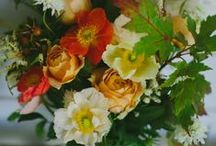 Bouquets -Peach , Orange & Coral / by Flower 597