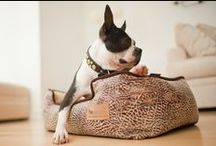Dog Beds / Lounge Beds, Snuggle Beds,Wicker Dog Beds and Chill Pads