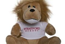 Socrates the Lion / The official Stratford Animal is Socrates the Lion! See him here. We'll be sure to feature other favorite furry friends, too!