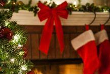 Celebrations/Holidays / by Jackie PortilloHyten