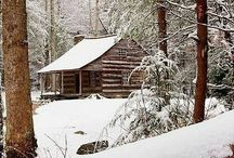 My Cabin in the Woods... / ...if I had one.