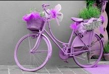 bicycle / crummy bicycles to dream again