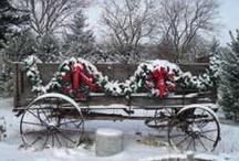 Christmas / by Jeanette Demanett