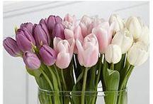 Burgess florist wedding ideas