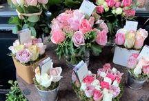 Burgess florist arrangements ideas