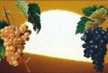 """Couniniots Grp. """"Currants, Raisins, Sultanas""""  / Since 1876, we bring you the world's best varieties of Currants, Raisins and Sultanas - the old fashined way: sun dried!  From one of the world's best viticulture geographic areas, straight to your plate!"""
