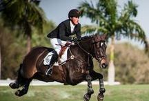 The Hampton Classic Horse Show / All things equestrian.