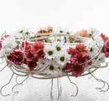Inspirational Chrysantemums ideas / Flower Factor grower Zentoo is a Chrysanthemum supplier with a complete assortment exclusive and high quality Chrysanthemums. So lovely to use in all kinds of flower arrangements. Ideas we'd like to share!