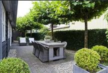 Garden / by ♥Ellen Eektimmerman♥