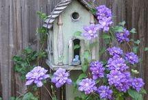 Garden ~ Beautiful ideas and Inspiration