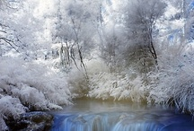 Incredible nature (day)