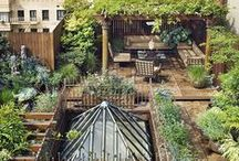 Urban Farming Inspiration