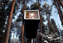 Tree cabane