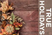 HOLIDAYS / Get into the holiday spirit with these great ideas! Party hosting, gifts, decorations, meals, snacks, and MORE!