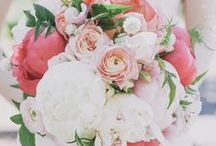 Wedding Floral Concept & Colors / Pastel color palette of main colors of  blush pink, light peach and white/cream with accents of different shades of pink with greens.  Simple, elegant, romantic and natural looking. Bridesmaid dresses: strapless light peach color