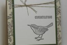 Stampin Up Cards / by Kath